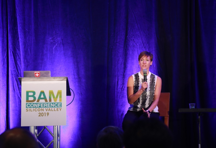 BAM conference image 18